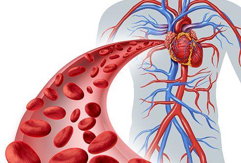 اعراض هبوط الدورة الدموية