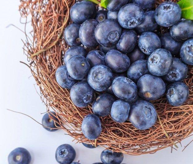 العنب البرى