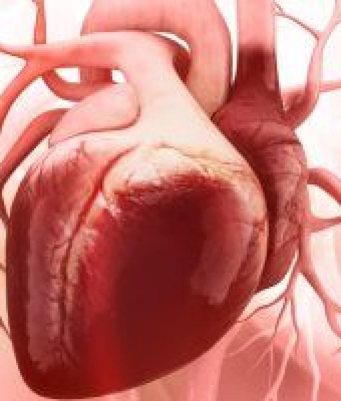 """7 نصائح تساعد على تقليل مخاطر الإصابة بأمراض القلب.. اعرف إيه هى """"انفوجراف"""""""