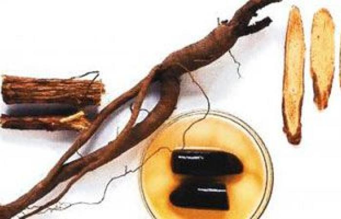 علاج أمراض الجهاز التنفسى ومحاصرة تلوث الهواء بالأعشاب الطبيعية
