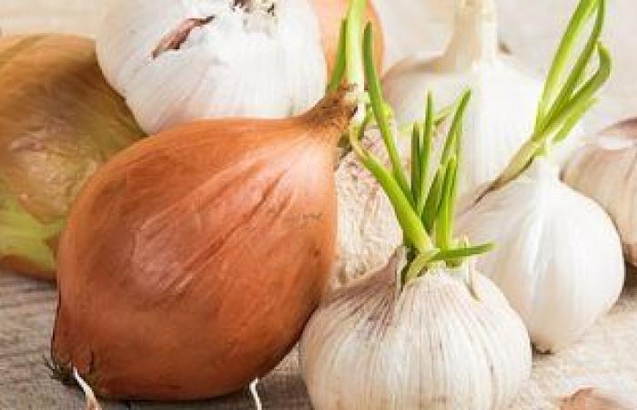 ركز على الفوائد وانس الرائحة.. اعرف البصل ممكن يعمل إيه فى جسمك؟