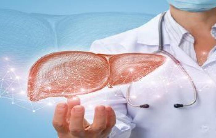 روشتة للحفاظ على صحة الكبد ومحظورات يجب الابتعاد عنها