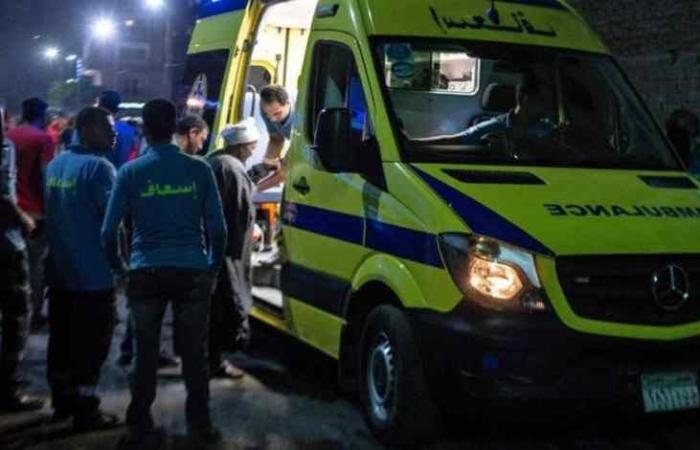 في مصر قتل والديه وأفرادا من عائلته بدم بارد