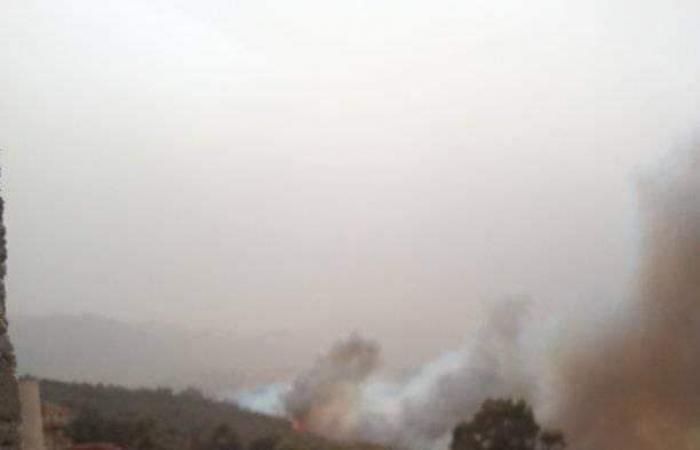 بالصور ـ اندلاع عدة حرائق في بومرداس الجزائرية