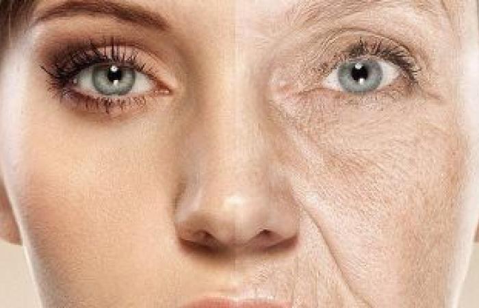 ما بين الخرافة والحقيقة.. اعرف النظام الغذائى المناسب فى سن الشيخوخة