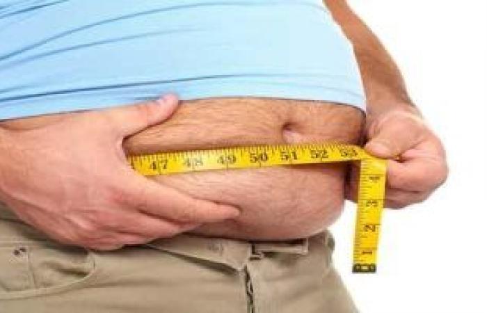 دراسة تحذر: السمنة واتباع نظام غذائى دسم قد يسببان تساقط الشعر