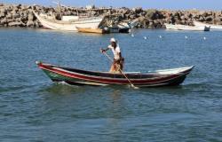 شاهد ثروة في جيفة حوت نافق.. قصة صيادين يمنيين لا تصدق
